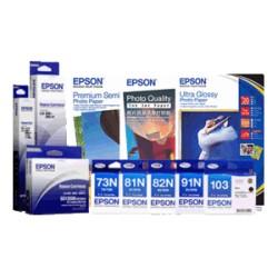 Epson C13T851780 Light Black Ink For P808